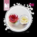 flower_ballroos
